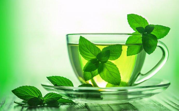 известна польза мятного чая