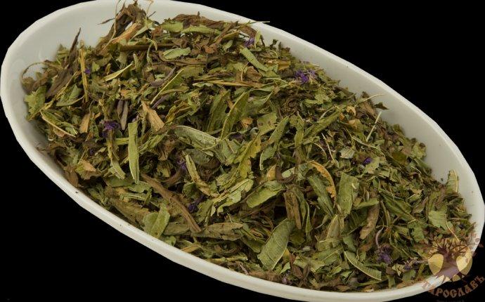 Купить Иван-чай от 64 руб. за 50 гр