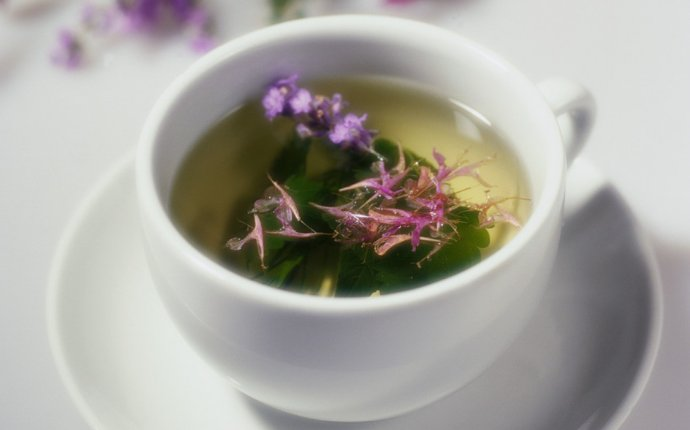 Полезные свойства душицы и чай из нее