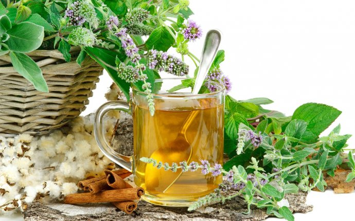 Полезные травы для чая, их свойства | LadysBlog.ru